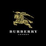 Burberry(100ml,45ml,15ml)