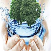 Бактерии  для очистки водоемов