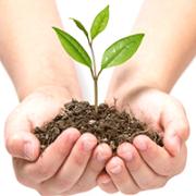 Удобрение для почвы и гербициды